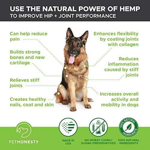 shepard with PetHonesty Glucosamine Turmeric Hemp Supplement for Dogs
