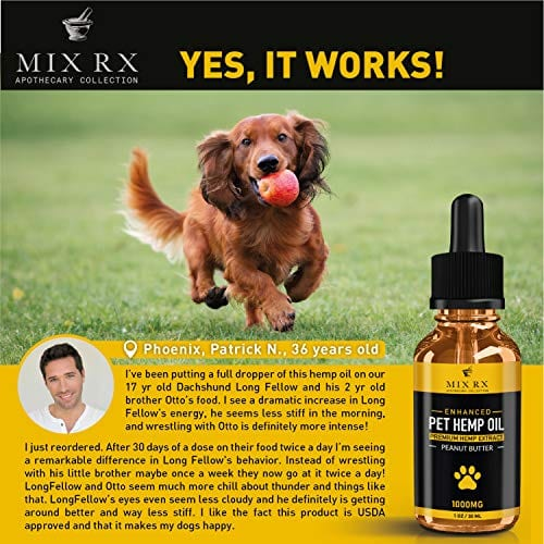 dog with Mix Rx Pet Hemp Oil treats - Organic Anxiety Itchy Skin Relief