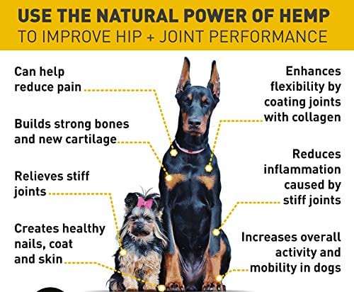 Power of Mix Rx Pet Hemp Oil treats - Organic Anxiety Itchy Skin Relief